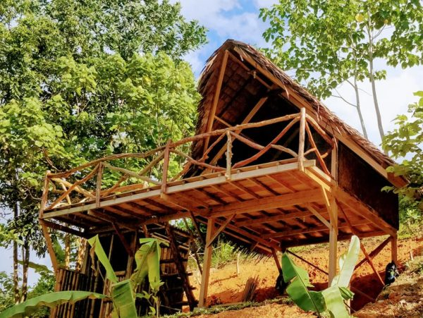 Airbnb Rooms - Barton Jungle Cottages