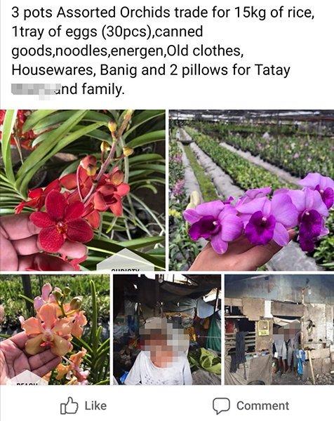 Online Barter Philippines - online barter facebook group